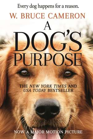 A dog purpose